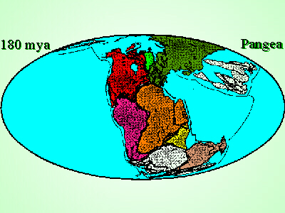 impact of continental drift on evolution How continental drift affects climate: part ii – possible snowball earth triggering mechanisms + regional effects of mountain ranges by the evolution of forests.