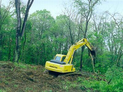 two major causes of the destruction of the rainforest Rainforest destruction essay examples 12 total results two major causes of the destruction of the rainforest  an essay on the importance of the tropical rainforest.